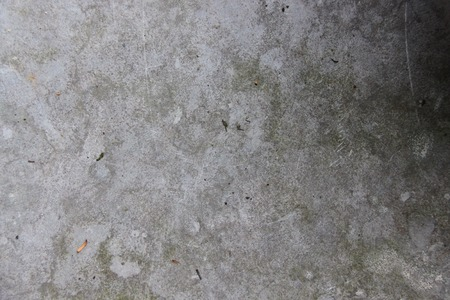 piso piedra: Suelo de piedra gris.