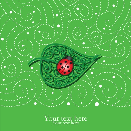 Card with decorative leaf and ladybug Vector