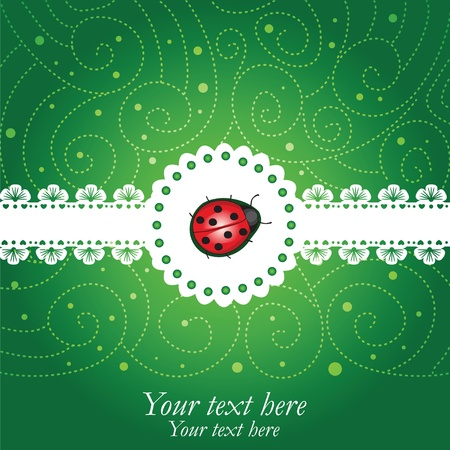 Ladybug green & lace  background