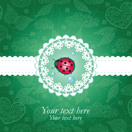 Ladybug green & lace background Vector