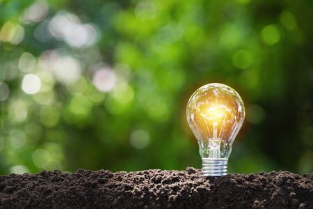 Light bulb with coins concept put on the soil under green nature background.