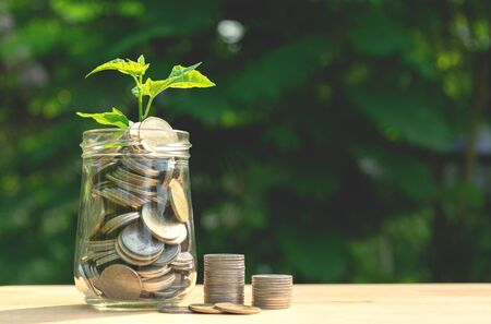 Coins in glass jar Set on wooden plate, put in a green park background also some coins beside with plant on top. Stock fotó