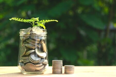 Coins in glass jar Set on wooden plate, put in a green park background also some coins beside with plant on top.