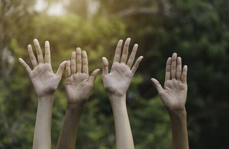 Hands up of female in garden nature and sunset background for voting,teamwork concept.