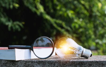 Magnifying glass with a book and light bulb  in nature background concept. Stockfoto