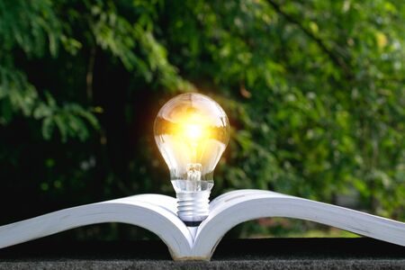 Light bulb on the book put in park nature background.
