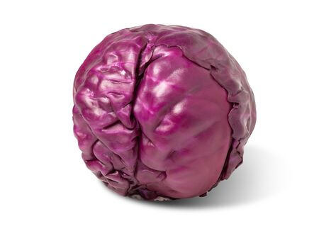 Purple cabbage isolated with clipping path on white background. Фото со стока