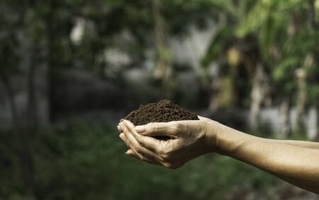 Hand holding fertile soil for plant to growing on nature background.