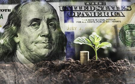 Double Exposure coins,young plant and dollar in finance,business concept.