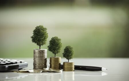 Pile of coins with the tree on top put on the wooden plate,in soft nature  background.