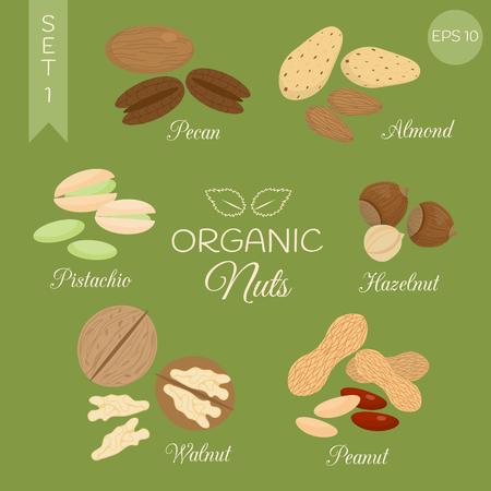 pecan: Organic nuts set. Pecan, almond, pistachio, hazelnut, walnut, peanut. Set # 1.