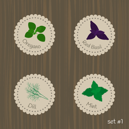 mint: Culinary herbs labels. Set #1. Oregano, red basil, mint, dill.