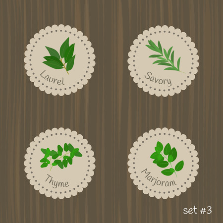 savoury: Culinary herbs labels. Set #3. Laurel, savory, thyme, marjoram.