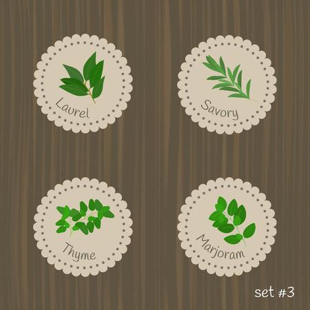 marjoram: Culinary herbs labels. Set #3. Laurel, savory, thyme, marjoram.
