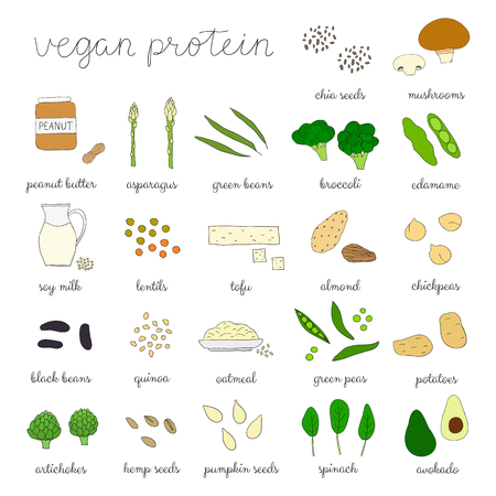 Plant-based protein. Hand drawn vegan products. Soy milk, peanut butter, broccoli, lentils, almond, avokado, tofu, asparagus, seeds, artichoke, spinach, mushroom, oatmeal, potatoe, edamame, quinoa.