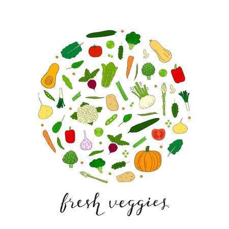 Hand gezeichnet Gemüse in Kreisform. Butternut-Kürbis, Rosenkohl, Fenchel, Collard, Artischocke, Blumenkohl, Rüben, Tomaten, Gurken, Kürbis, Brokkoli, Pfeffer, Maca, Kartoffeln, Spinat, Karotten.