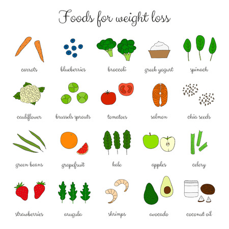 low fat diet: Foods for weight loss. Low fat diet concept. Hand drawn products. Broccoli, salmon, shrimps, arugula, cauliflower, avocado, coconut oil, apple, spinach, yougurt, carrot, tomatoes, celery, strawberry.