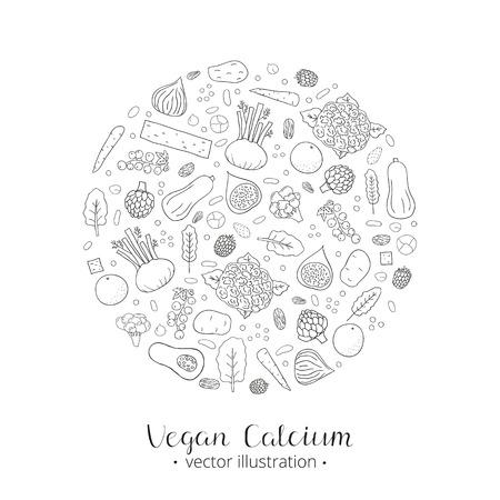 Hand drawn outline vegan calcium products in circle Blackcurrant, blackberry, date, brussel sprout, fennel, collard, amaranth, artichoke, chickpea, almond, lentil, cauliflower, tofu, kale, orange, fig
