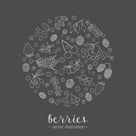 Hand drawn outline berries in circle shape. Strawberry, goji, sea buckthorn, cherry, raspberry, barberry, mulberry, gooseberry, juniper, aronia, rose hips, honeysuckle, cloudberry, maqui.
