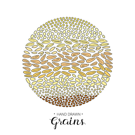 spelt: Hand drawn cereal grains composed in circle shape on white background. Illustration