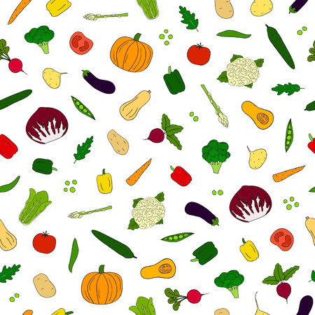 butternut squash: Seamless pattern with hand drawn colorful vegetables. Illustration