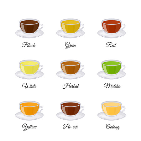 Different kinds of tea including black, green, white, matcha, pu-erh, yellow, red, herbal, oolong isolated on white background. Vector illustration in cartoon style.