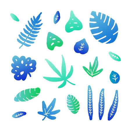 Set of doodle colored jungle leaves isolated on white background.