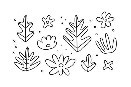 Set of doodle outline tropical leaves and flowers. 向量圖像