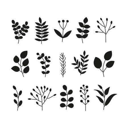 Set of doodle leafy twigs, wild herbs, plants, berries. Vettoriali
