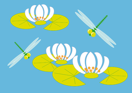 green dragonfly flying over the flowers of water lilies Vector