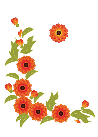 calendula:  vignette from the stylized orange flowers and leaves of calendula
