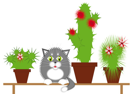 Gray cat sitting on a bench among the flowering cactuses