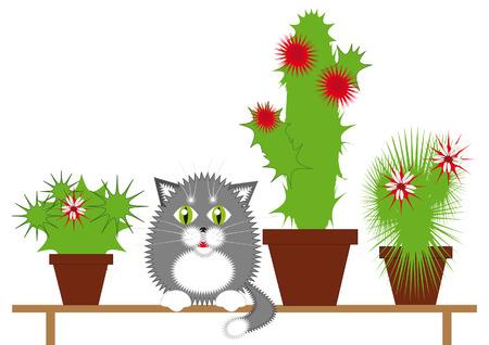 prickles: Grigio gatto seduto su una panchina tra la fioritura di cactus
