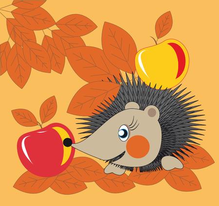 little hedgehog gathering apples in the fall garden Vector