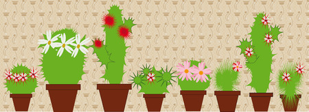 houseplants: Large and small vetuschie cacti in pots in the room Illustration