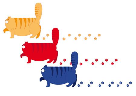 cat walk: three multi-colored cat walk sedately