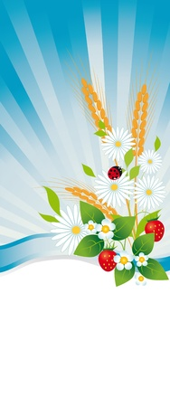 Summer illustration with flowers, strawberries and ears Stock Vector - 13160102