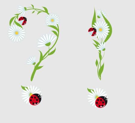 point d exclamation: point d'interrogation et point d'exclamation des fleurs de camomille et les coccinelles