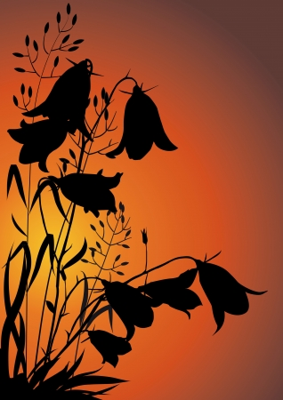 silhouettes of flowers and herbs against the evening sky Ilustrace