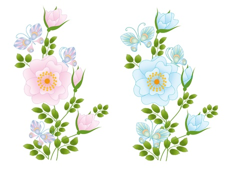 composition of wild rose and butterflies Vector