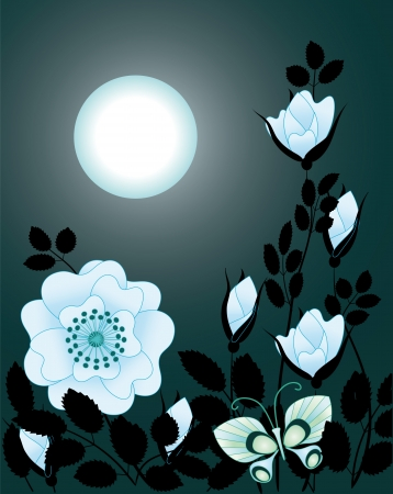 blue rose in the night sky Vector