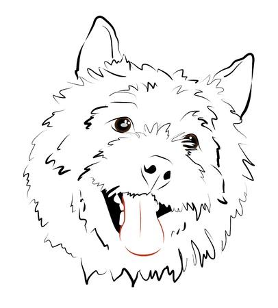 Contented face fluffy dog Stock Vector - 16957474
