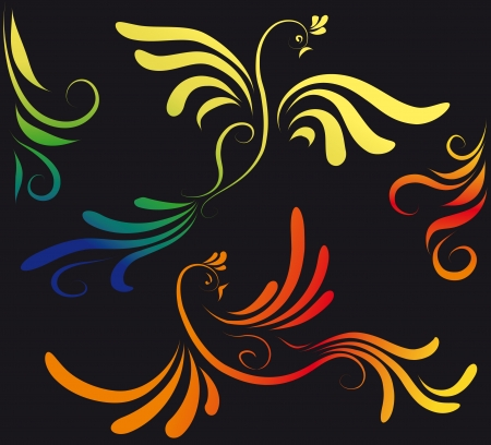 two firebird on a black background Vector