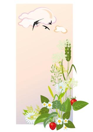 prairie grasses and flowers against the morning sky Illustration