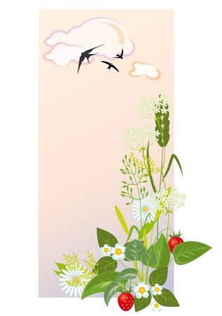 prairie grasses and flowers against the morning sky Illustration