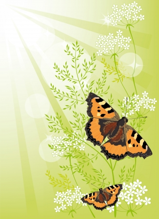 Summer green background with flowers and butterflies Vector