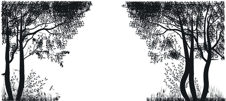 forest: Silhouettes of trees in a forest glade