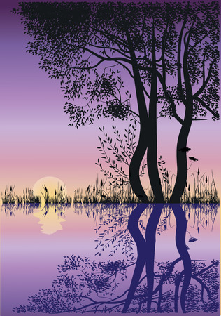 silhouettes of trees by the lake at sunset Illustration