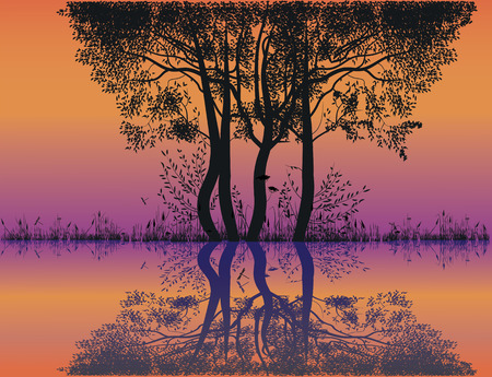 loch: silhouettes of trees by the lake at sunset Illustration