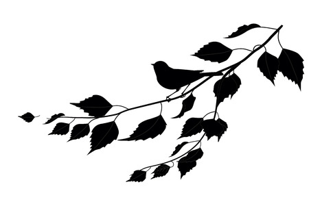 Small bird sitting on a branch of leaves  Vector